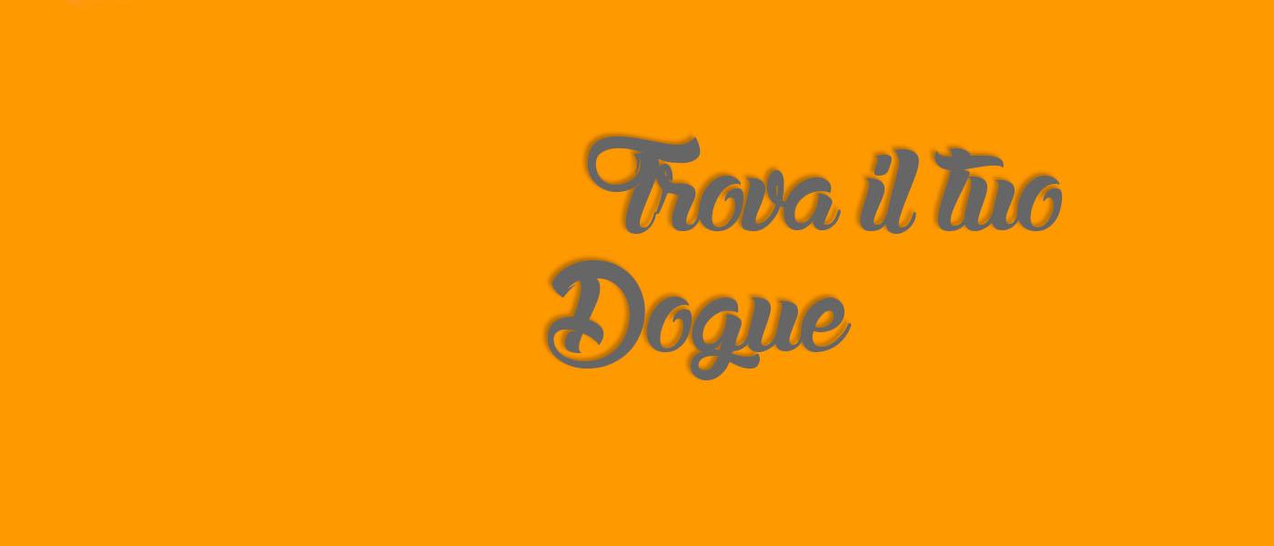 Allevamento Dogue del Monticano: slide3