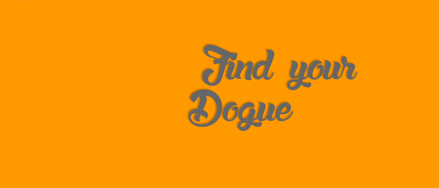 Allevamento Dogue del Monticano: Slide 3 En