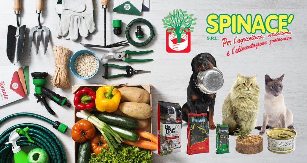 Spinacè srl: i migliori alimenti per i nostri Dogue de Bordeaux